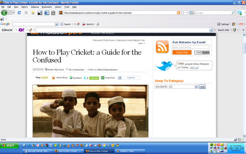 How to Play Cricket: a Guide for the Confused